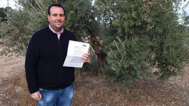 El secretario de Organización del PSOE de Granada, Álex Casares.