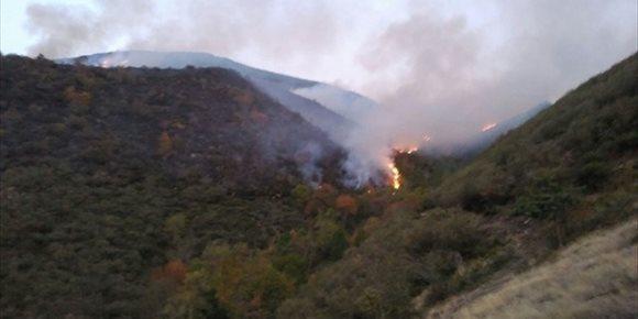 3. La Rioja registró 81 incendios forestales en 2017, de los que casi dos tercios fueron intencionados