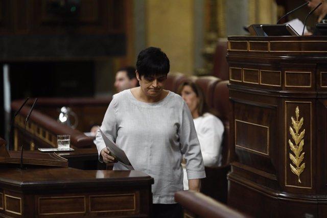 Marian Beitialarrangoitia, diputada de Bildu
