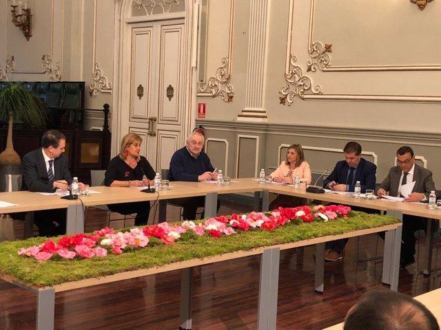 La presidenta de la Diputación de Cádiz en reunión de la FEMP