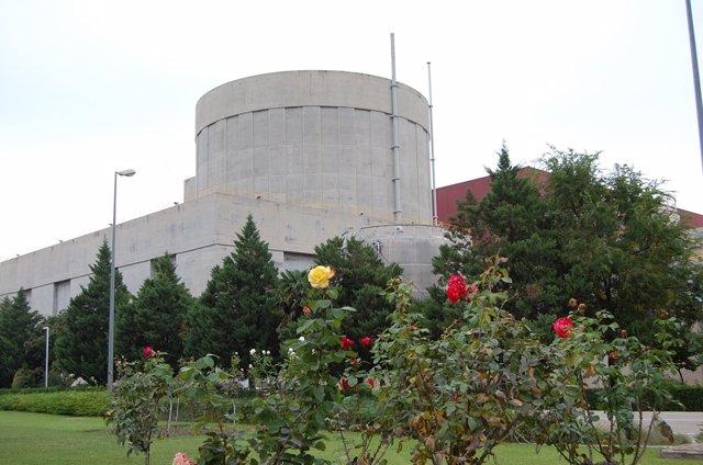 Reactor De Cofrents (València)