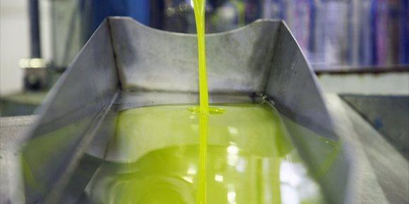 1. Asaja apunta que los datos de producción en enero de aceite de oliva se acercan al aforo en la provincia de Jaén