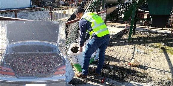 2. Nueve investigados por el robo de ocho toneladas de aceitunas en la comarca de Montánchez