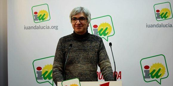 10. IU Sevilla aprueba su Plan de Acción para 2018 y el informe de gestión del coordinador Manuel Lay