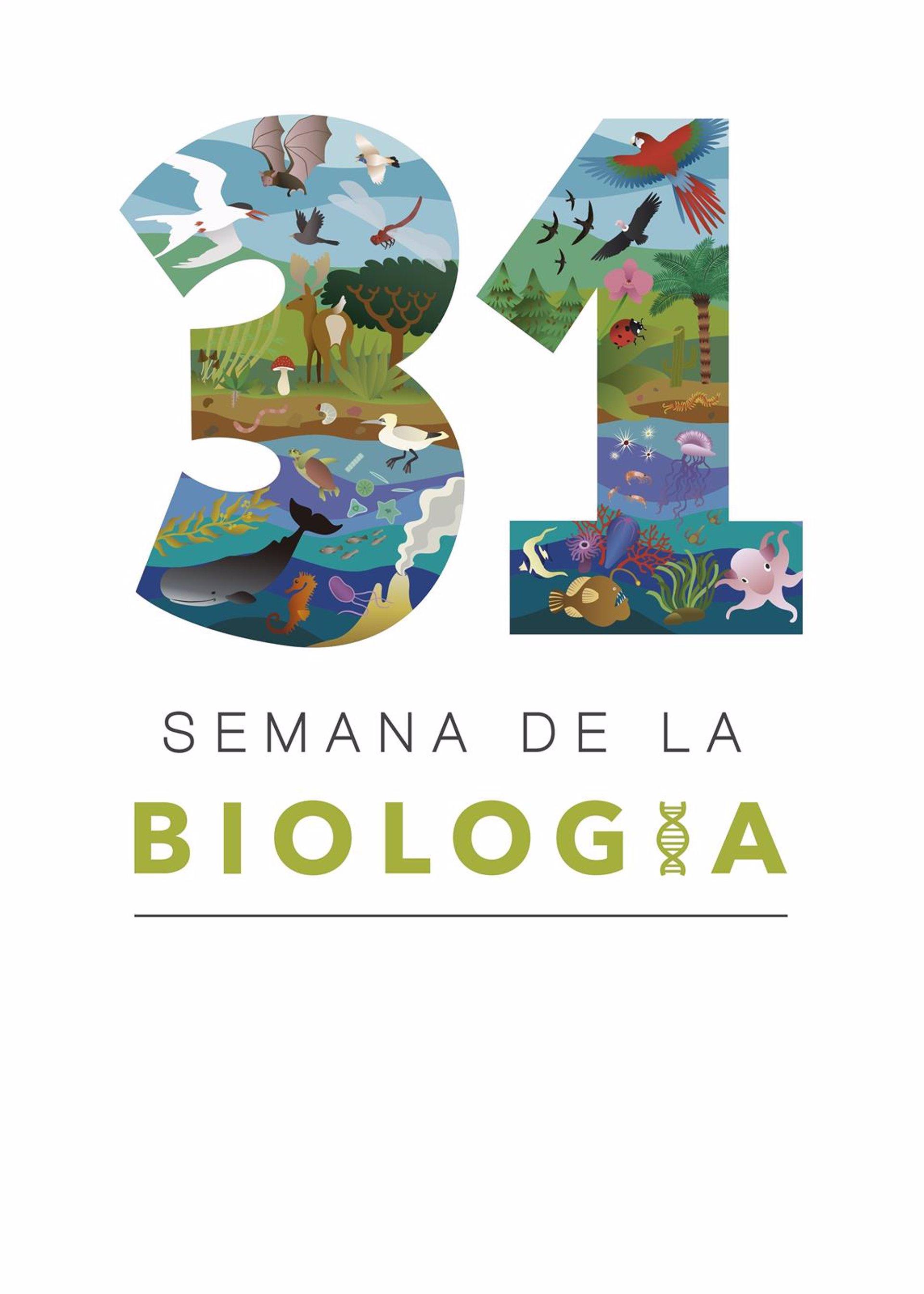 """La UMU celebra la XXXI Semana de Biología """"cargada de actividades"""""""