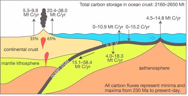 El lento ciclo del carbono océanico