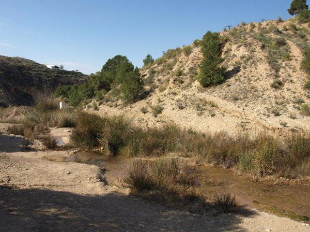 Río Chícamo