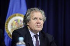 Dimiteix el cap de la missió contra la corrupció de l'OEA a Hondures per diferències amb Luis Almagro (FLICKR)