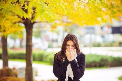 La alergia al polen, también en invierno