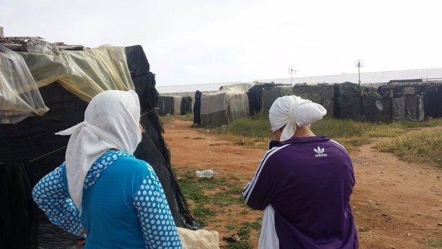 Mujeres en chabolas de Tierras de Almería