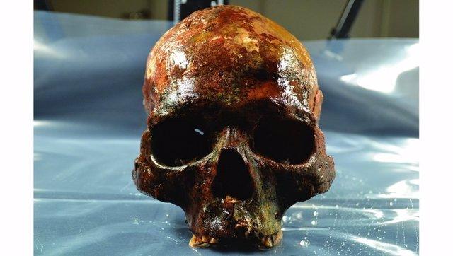 Uno de los cráneos encontrados
