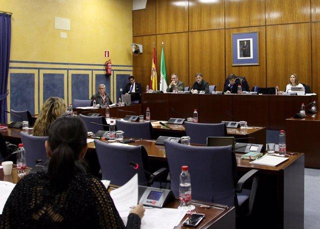 Comisión de Medio Ambiente y Ordenación del Territorio del Parlamento andaluz