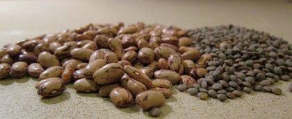 Comer legumbres reduce la mortalidad por cáncer