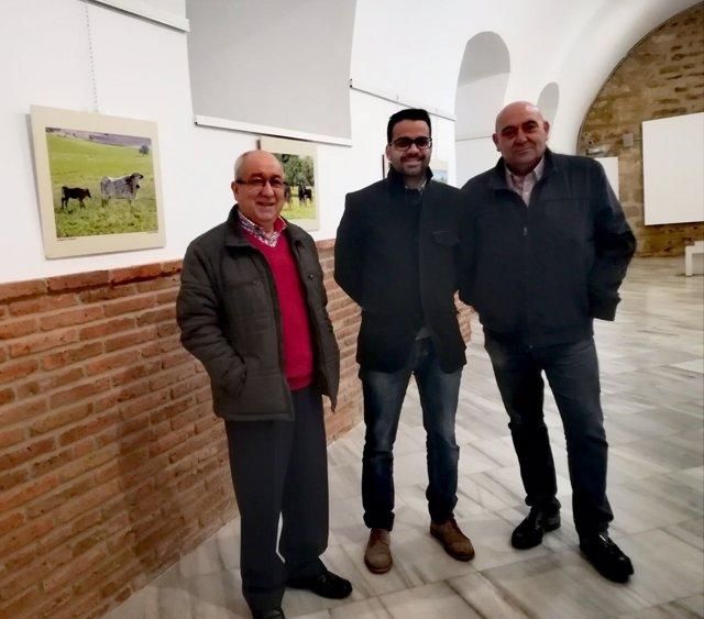 Andrade, Ballester y Ledesma, en la exposición