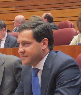 Portavoz PP en las Cortes de Castilla y León, Raúl de la Hoz