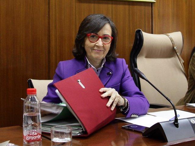 La consejera de Justicia e Interior, Rosa Aguilar, en comisión parlamentaria