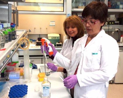 Experta destaca los avances en los tratamientos modificadores de la esclerosis múltiple producidos en la última década