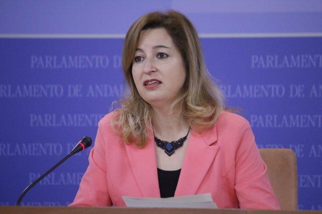 La parlamentaria de Podemos Andalucía Carmen Lizárraga