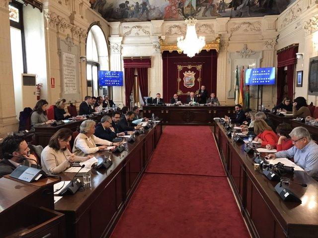 Pleno del Ayuntamiento de Málaga del mes de febrero