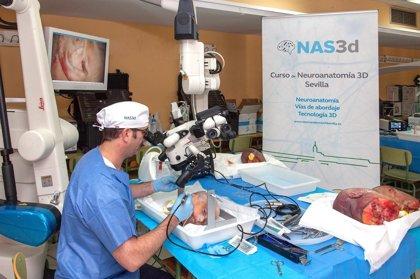 Neurocirujanos se forman en vías de abordaje en 3D en el Hospital Virgen del Rocío de Sevilla