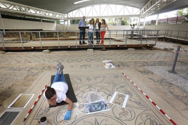 Restauración del mosaido de la Medusa de Río Verde Marbella