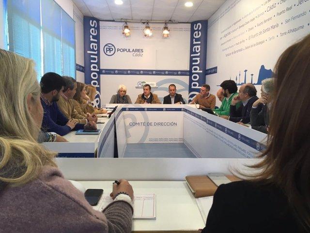 Antonio Sanz preside el comité de dirección del PP de Cádiz