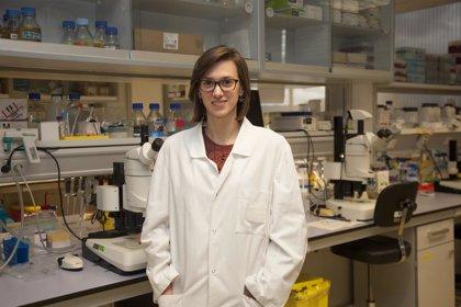 La investigadora del CIBIR Beatriz Sáenz-Narciso, premio extraordinario de doctorado por la Universidad de Salamanca