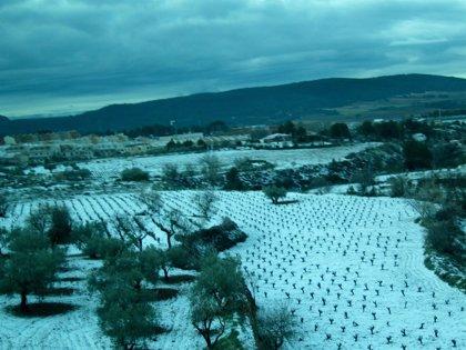 Aemet prevé nevadas para este martes en el interior de Valencia y Castellón