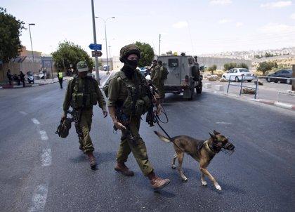 El Ejército israelí detiene a diez palestinos, uno de ellos primo de la adolescente Ahed Tamimi