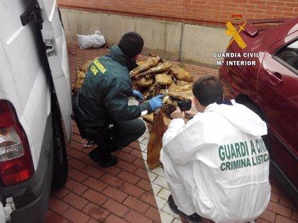 Dos detenidos por robar en una fábrica de jamones en Nava de Béjar (Salamanca)