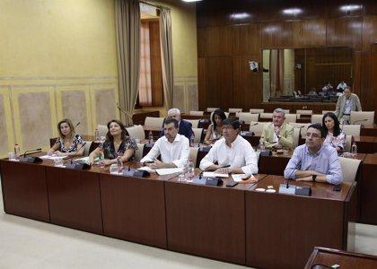 El grupo parlamentario sobre financiación vota el documento pactado por PSOE-A, Podemos e IU