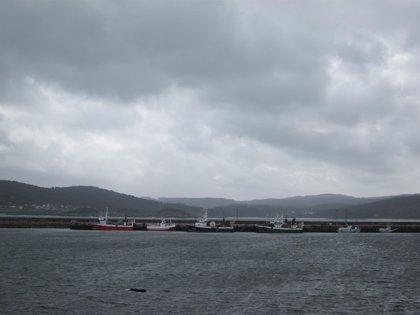 Parte de la flota gallega permanece este martes amarrada por viento en el litoral