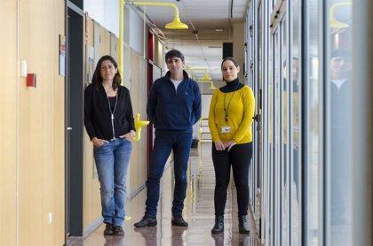 Investigadores españoles identifican un nuevo mecanismo molecular implicado en el Alzheimer