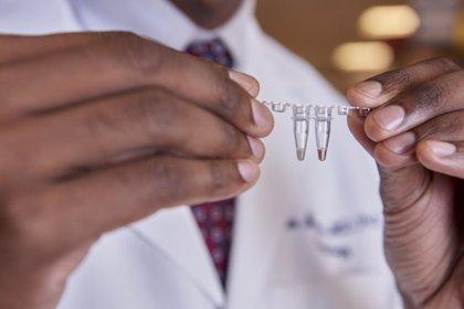 Usan el 'corta y pega' genético con CRISPR para bajar el colesterol malo