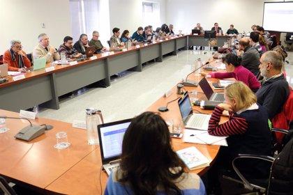La UPO aprueba el Grado en Relaciones Internacionales y una oferta de 29 nuevas plazas docentes