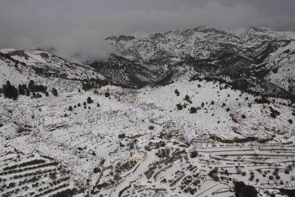 La nieve deja incomunicada una pedanía de Requena y obliga a cerrar el centro de tratamiento de residuos de Caudete
