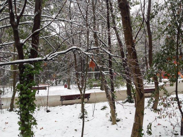 El Campo Grande de Valladolid, nevado