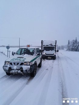 Carretera nevada, nieve, camiones