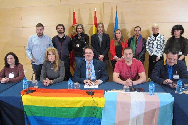 Los colectivos LGTB+ presentan la PL sobre diversidad sexual