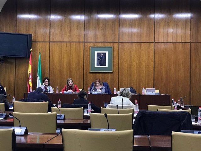 La consejera de Salud, Marina Álvarez, en comisión parlamentaria
