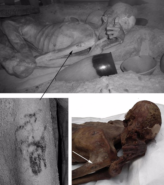 Detalle del tatuaje en la momia masculina