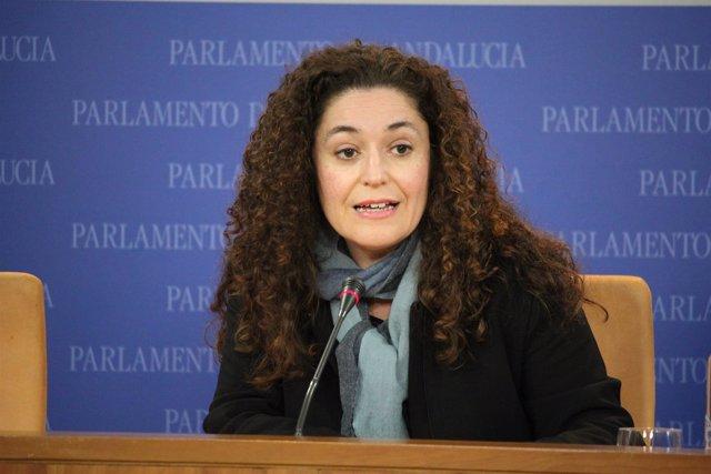 La portavoz adjunta de IULV-CA Inmaculada Nieto en rueda de prensa