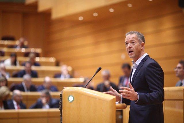 Ander Gil en la intervención en el Pleno del Senado sobre el 155