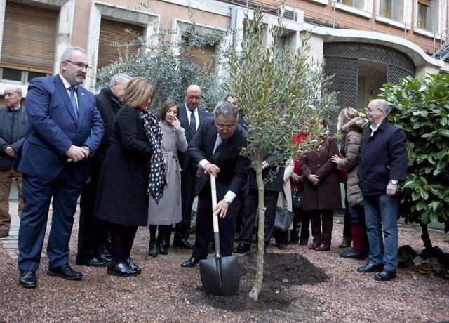 Acto en Interior en el que se ha plantado un olivo por las víctimas del 11M