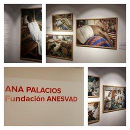 Exposición de Ana Palacios