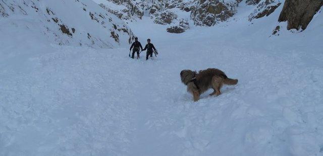Agentes de la Guardia Civil y Unidad Canina rastrean alud en Peña Telera