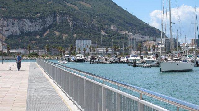 Puerto De Algeciras. Consejo De Administración