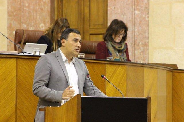 El diputado de Cs Andalucía Carlos Hernández