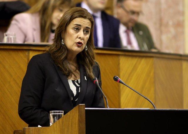 Sonia Gaya presenta al Pleno el proyecto de Ley de FP ed Andalucía
