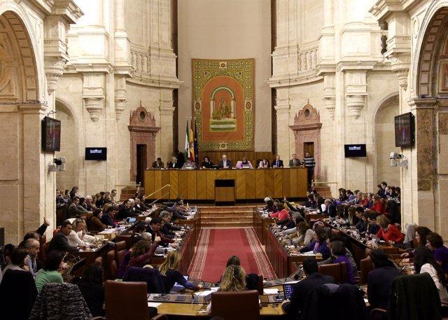 El Pleno durante la votación